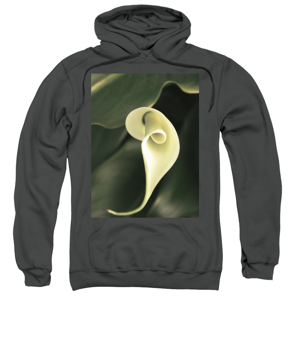 Flowers Sweatshirt featuring the photograph Flower Lily by Karen W Meyer