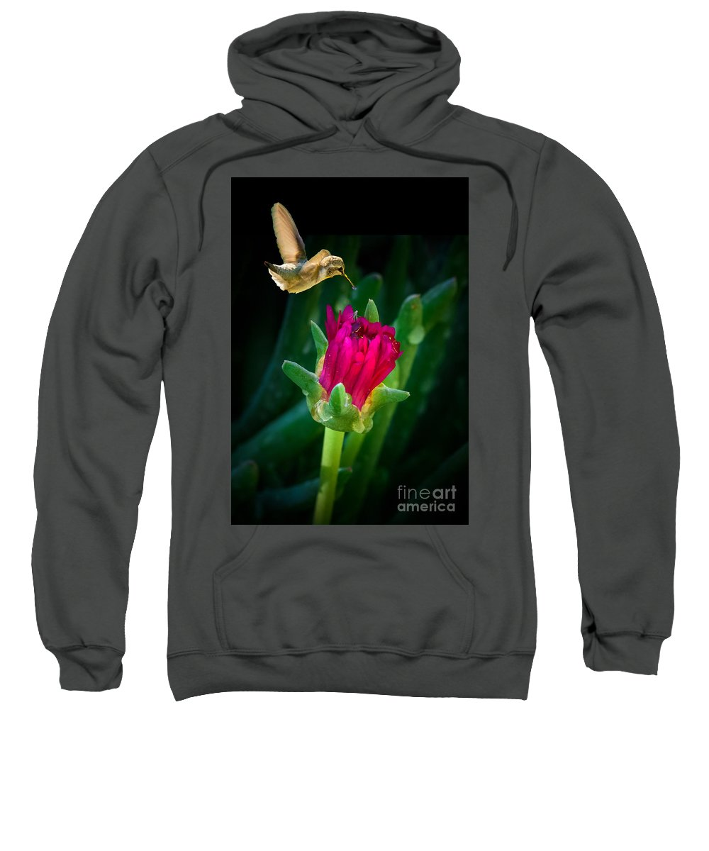 Flowers Sweatshirt featuring the photograph Flower-p by Larry White