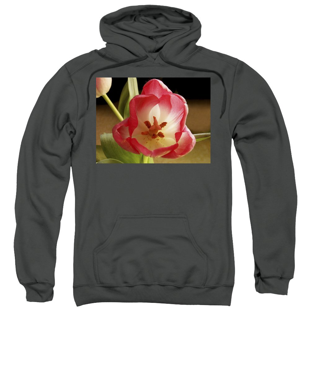 Flowers Sweatshirt featuring the photograph Flower Tulip by Nancy Griswold