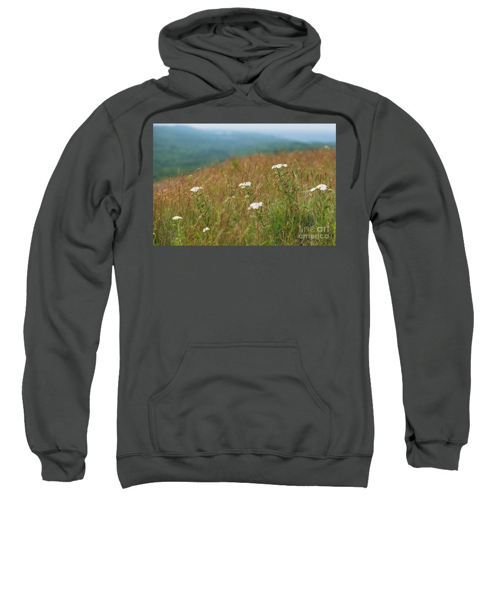 Mountain Sweatshirt featuring the photograph Flower View Of Mountains by Wesley Farnsworth