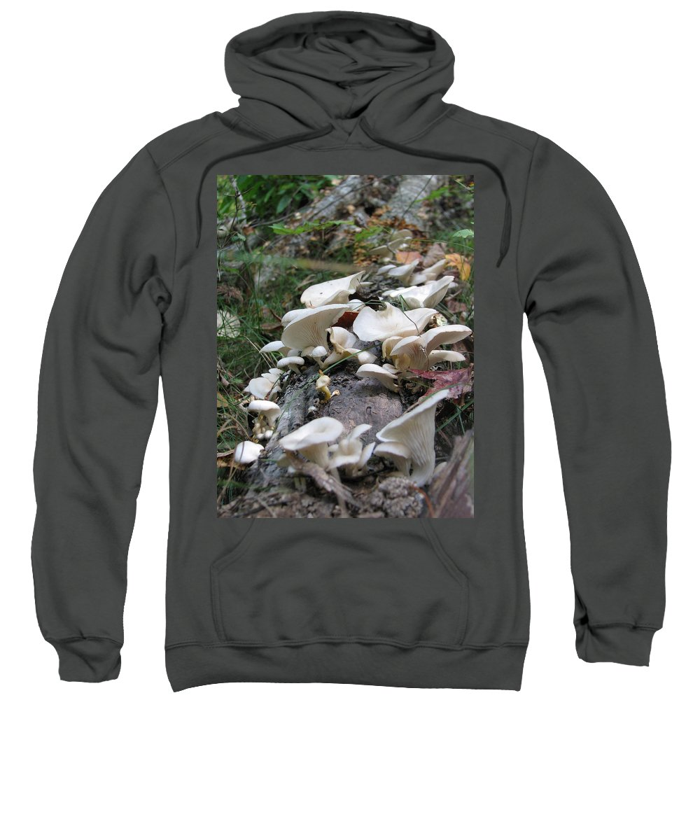 Mushroom Sweatshirt featuring the photograph Flowering Fungi by Stacey May