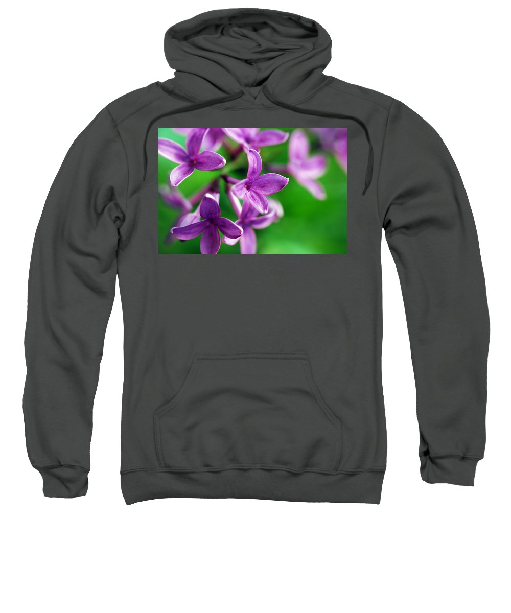 Lilac Sweatshirt featuring the photograph Flowering Lilac by Lori Tambakis