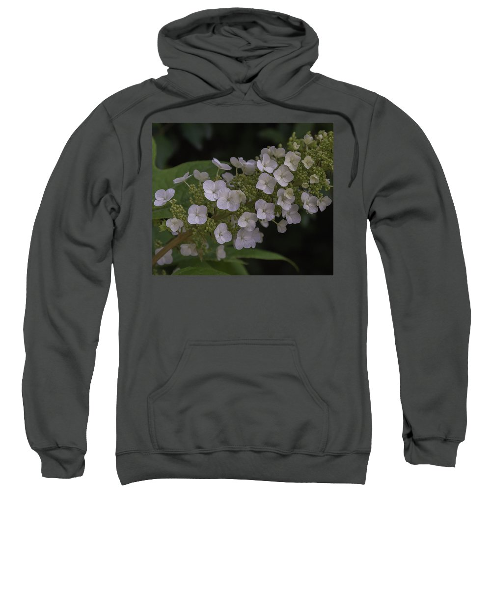 Flowers Sweatshirt featuring the painting Flowers 4 by Alexander Fuza