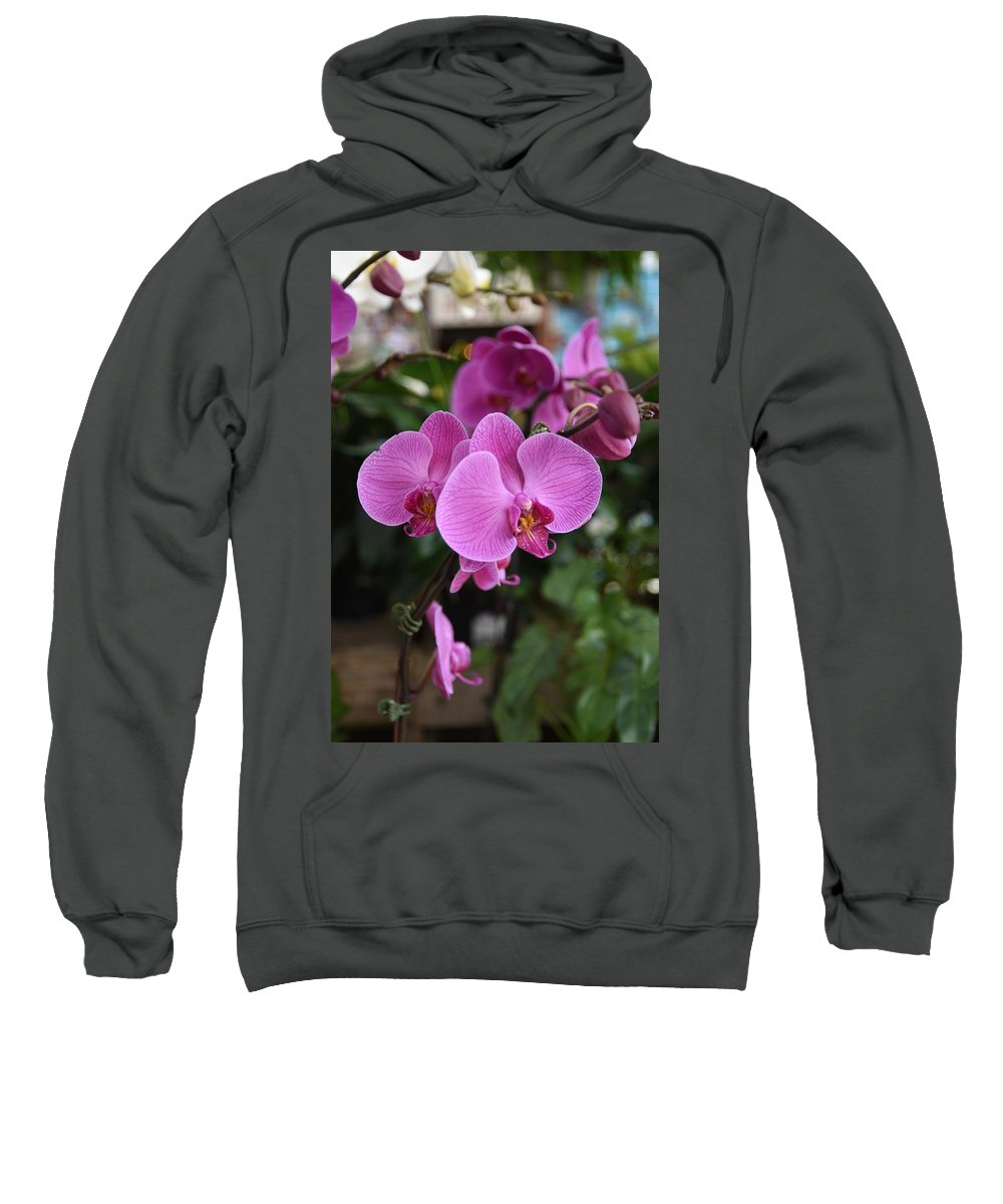 Orchids Photos Sweatshirt featuring the photograph Flowers 820 by Joyce StJames