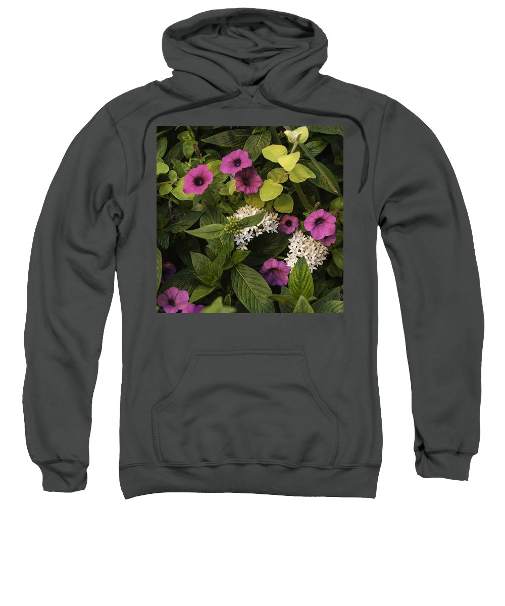 Flowers Sweatshirt featuring the painting Flowers by Alexander Fuza