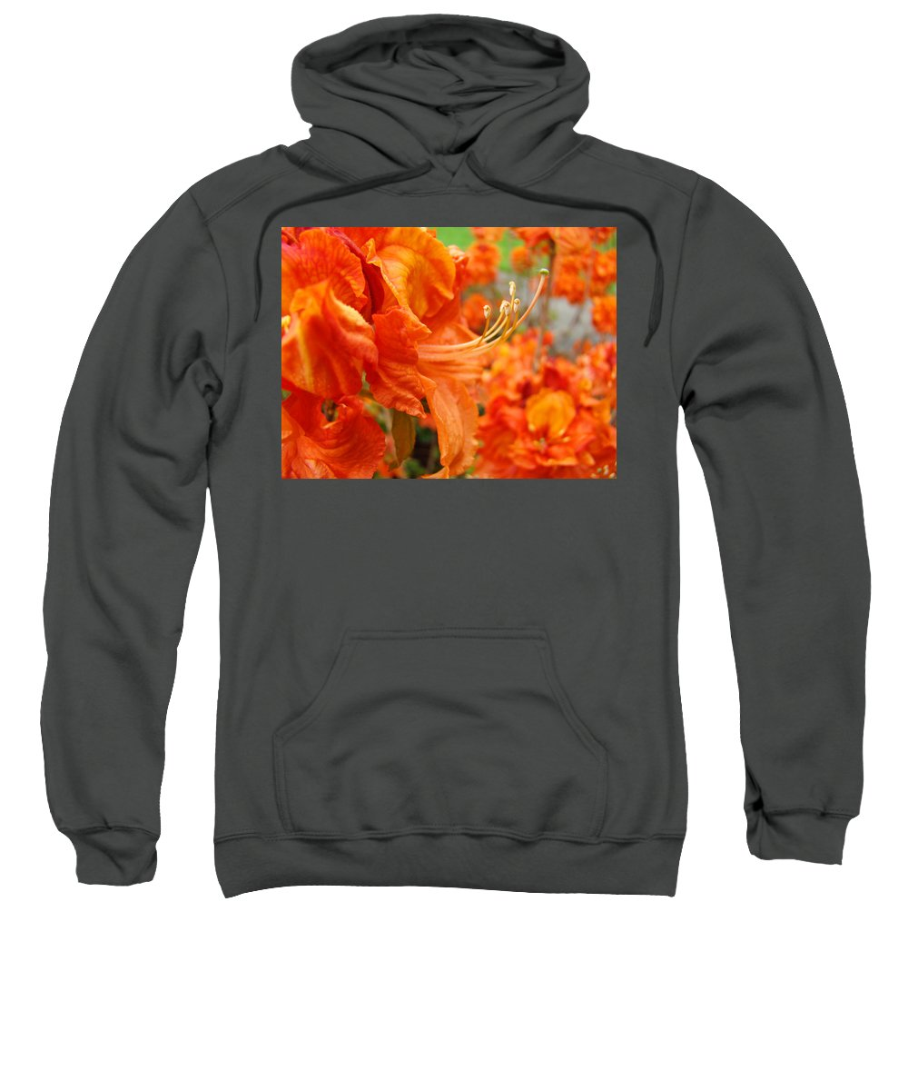 �azaleas Artwork� Sweatshirt featuring the photograph Flowers Azalea Garden Orange Azalea Flowers 1 Giclee Prints Baslee Troutman by Baslee Troutman