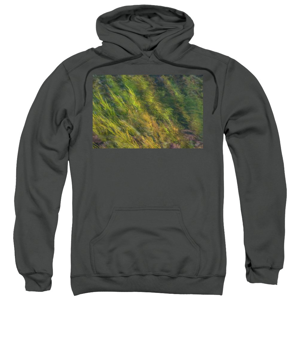 Appealing Sweatshirt featuring the photograph Flowing Luminescence by Leland D Howard