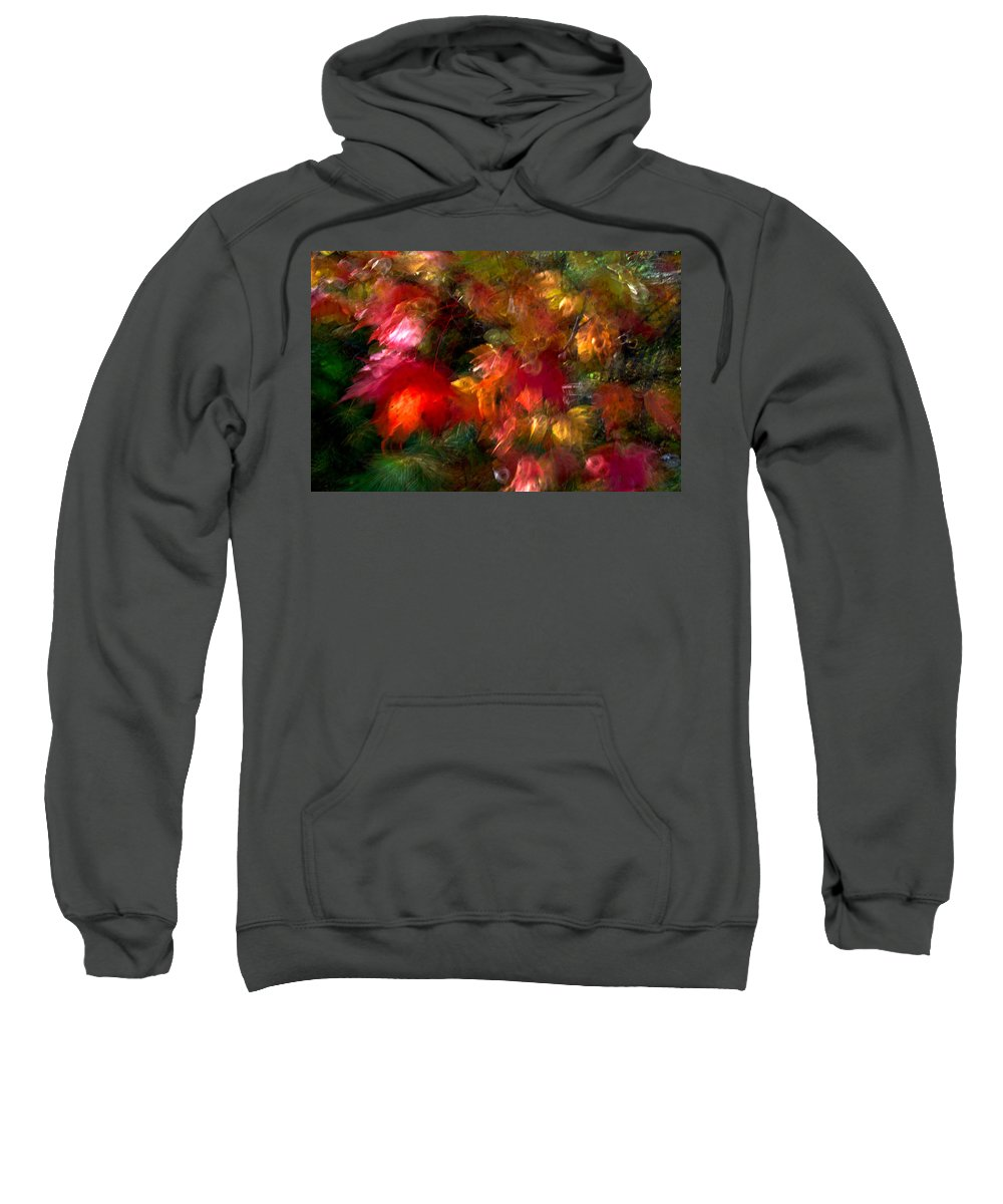 Canada Sweatshirt featuring the photograph Flury by Doug Gibbons