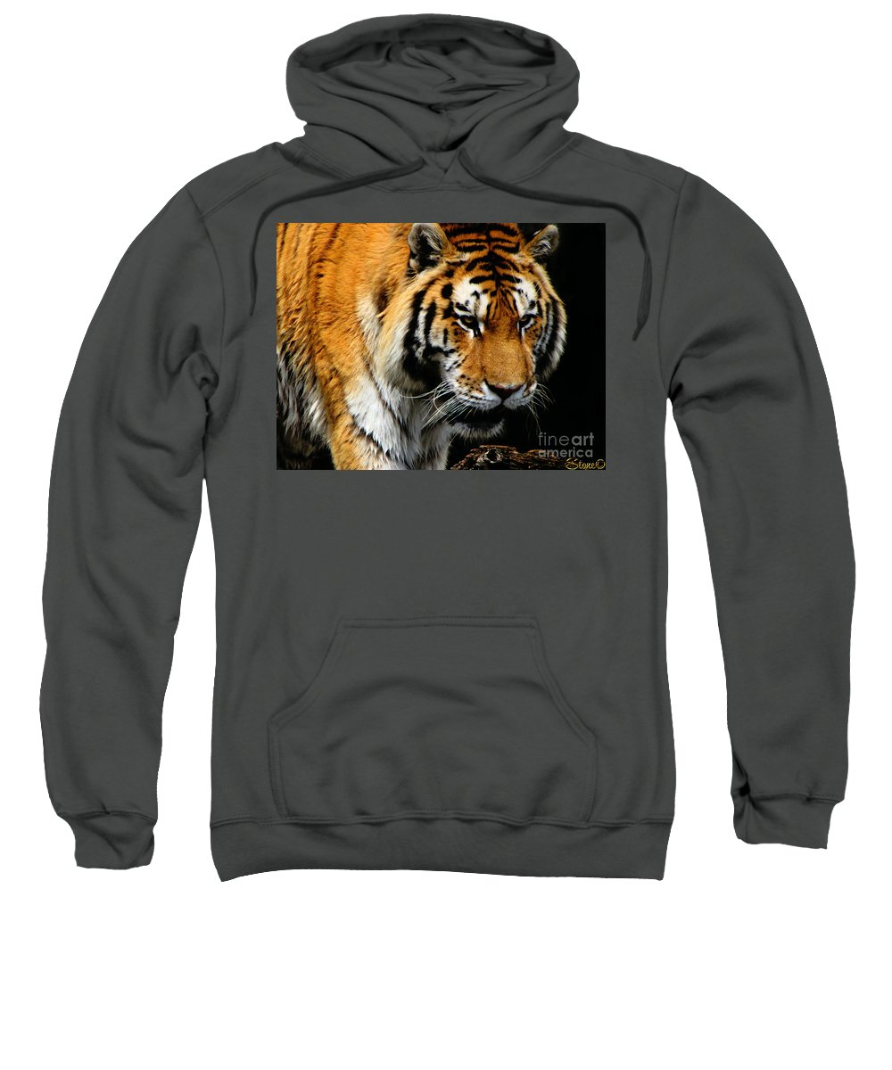 Tiger Sweatshirt featuring the photograph Focused by September Stone