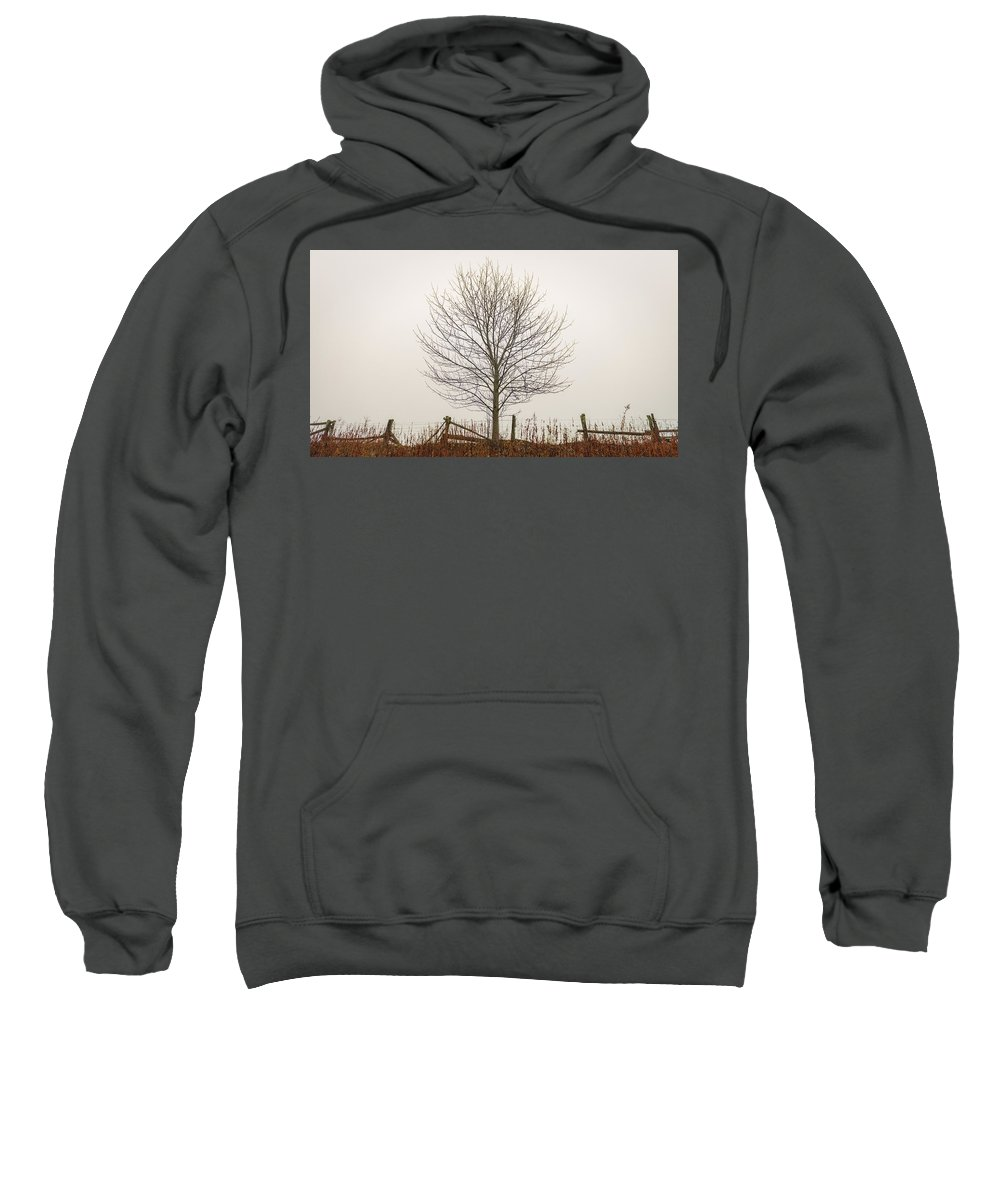 Simple Sweatshirt featuring the photograph Foggy Lone Tree Hill by Mike Koenig