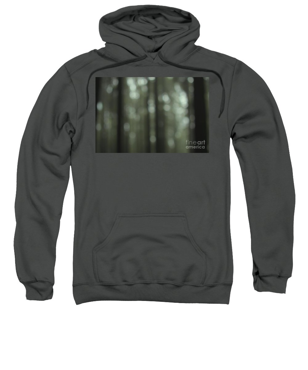 Forest Sweatshirt featuring the photograph Forest Bokeh by MingTa Li