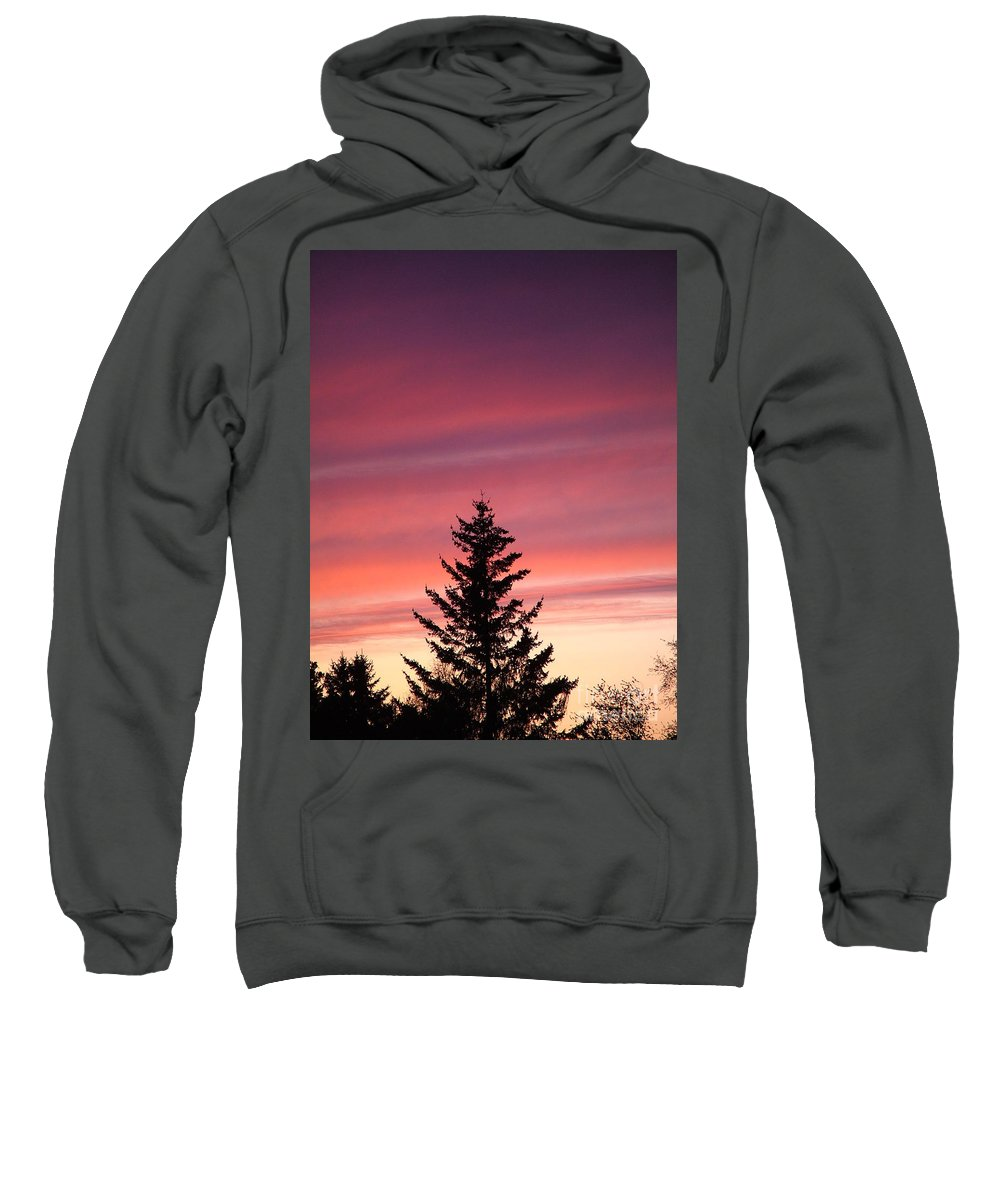 Sunset Photo Sweatshirt featuring the photograph Forest Grove Sunset by Nick Gustafson