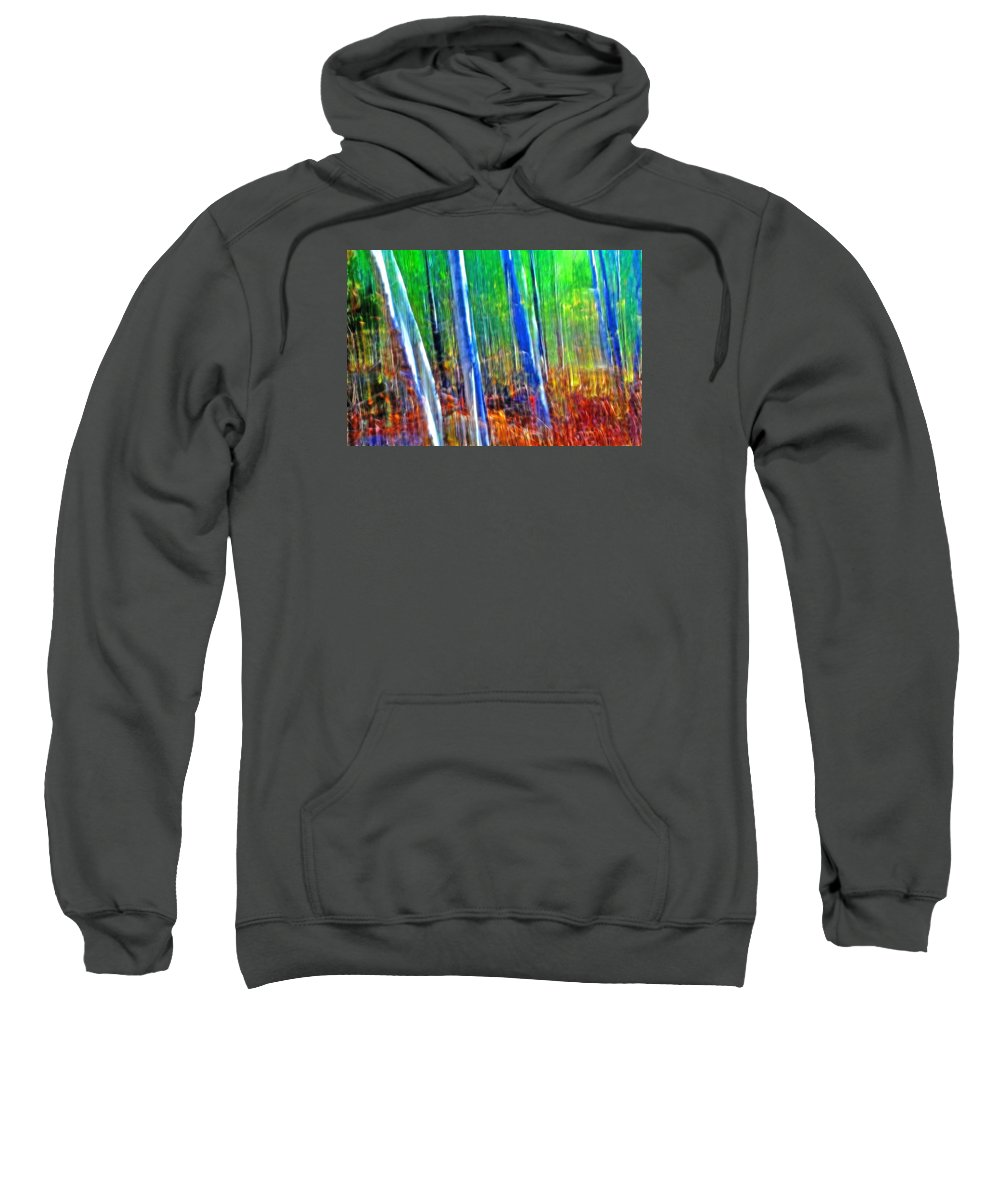 Forest Sweatshirt featuring the photograph Forest Magic by Bill Morgenstern
