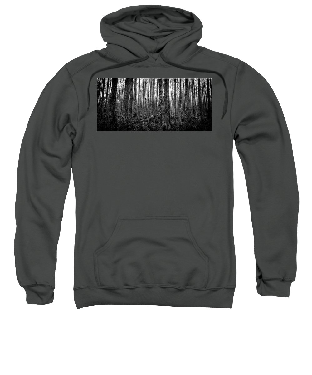 Florida Landscape Photography Sweatshirt featuring the photograph Forest Thru The Trees by William Haas