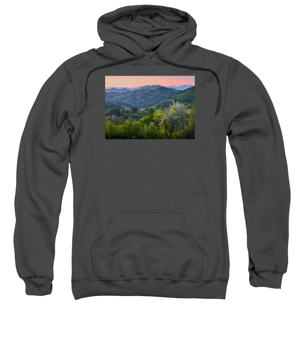 Forest Sweatshirt featuring the photograph Forest by Tsoncho Balkandjiev