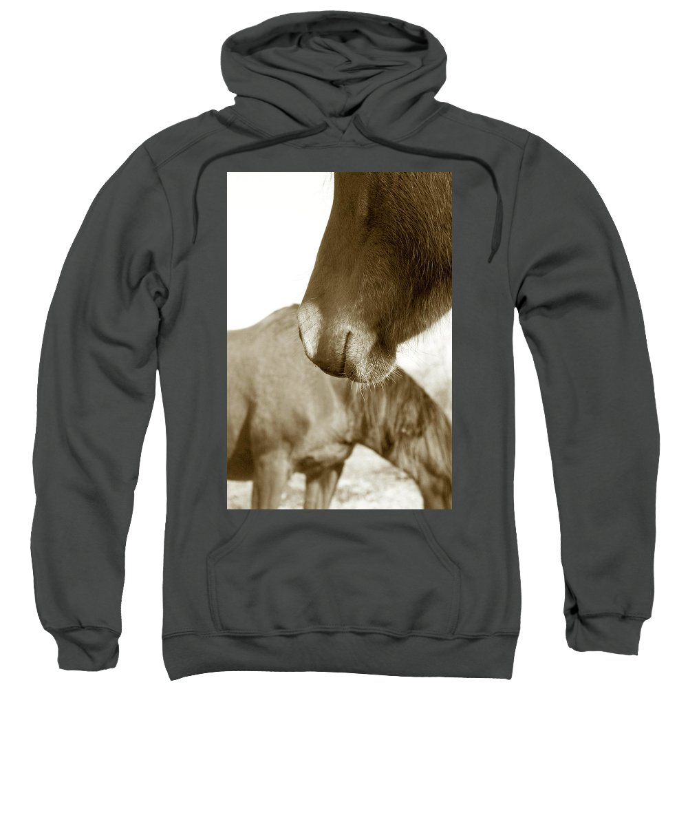 Horse Sweatshirt featuring the photograph Form Of A Horse by Toni Hopper