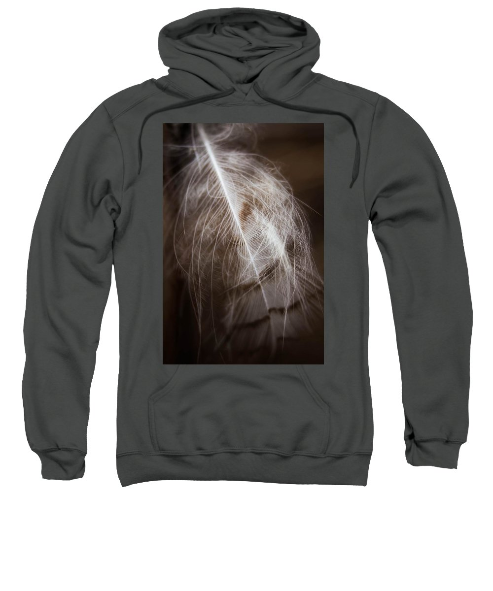 Feather Sweatshirt featuring the photograph Found Feather by Jeanette Fellows