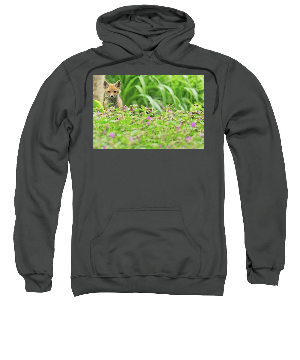 Red Sweatshirt featuring the photograph Fox In The Garden by Everet Regal