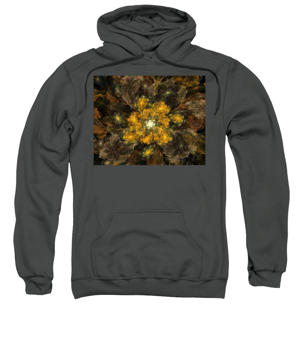 Digital Painting Sweatshirt featuring the digital art Fractal Floral 02-12-10 by David Lane