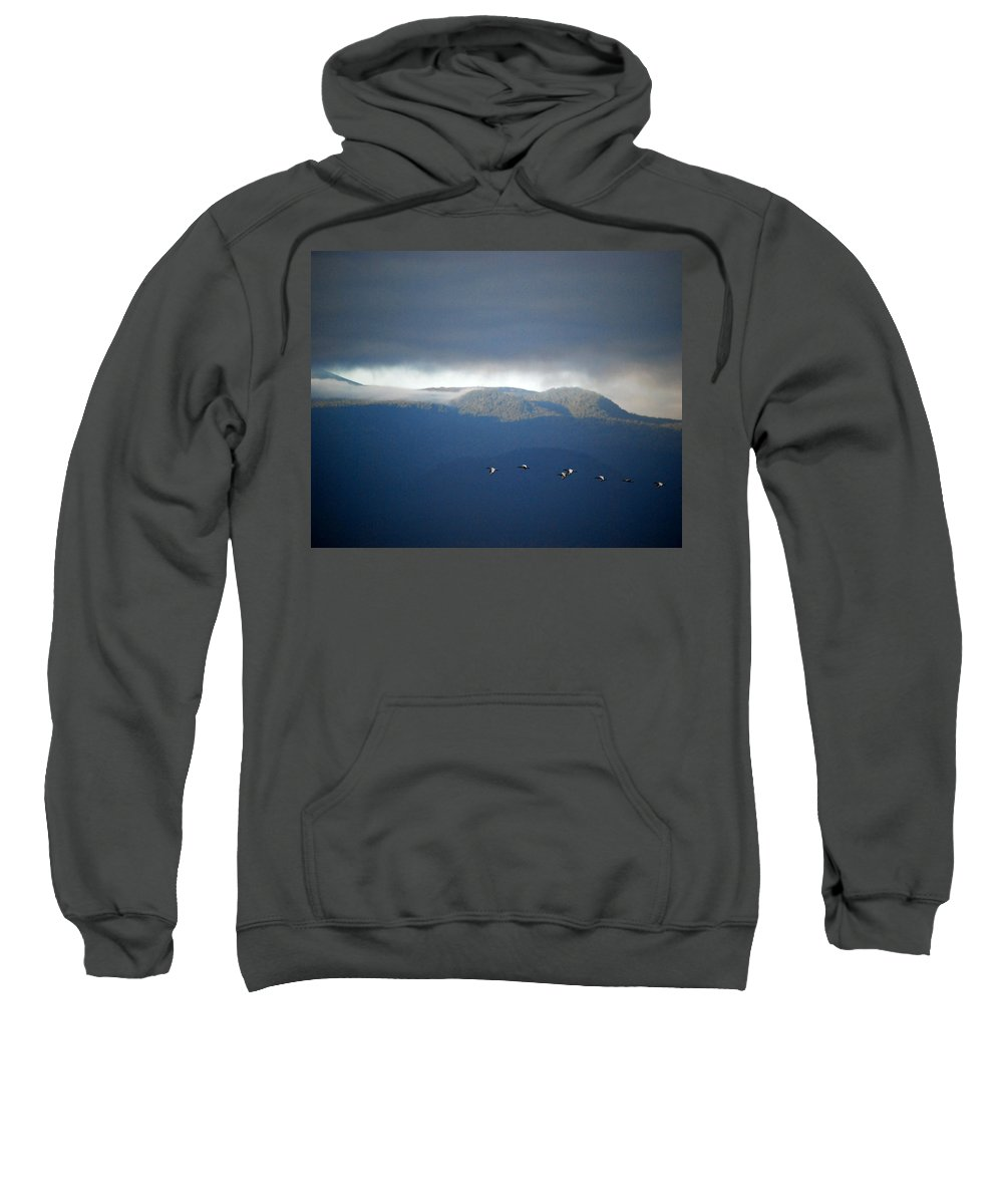 Kenya Sweatshirt featuring the photograph Free Flying by Pamela Peters