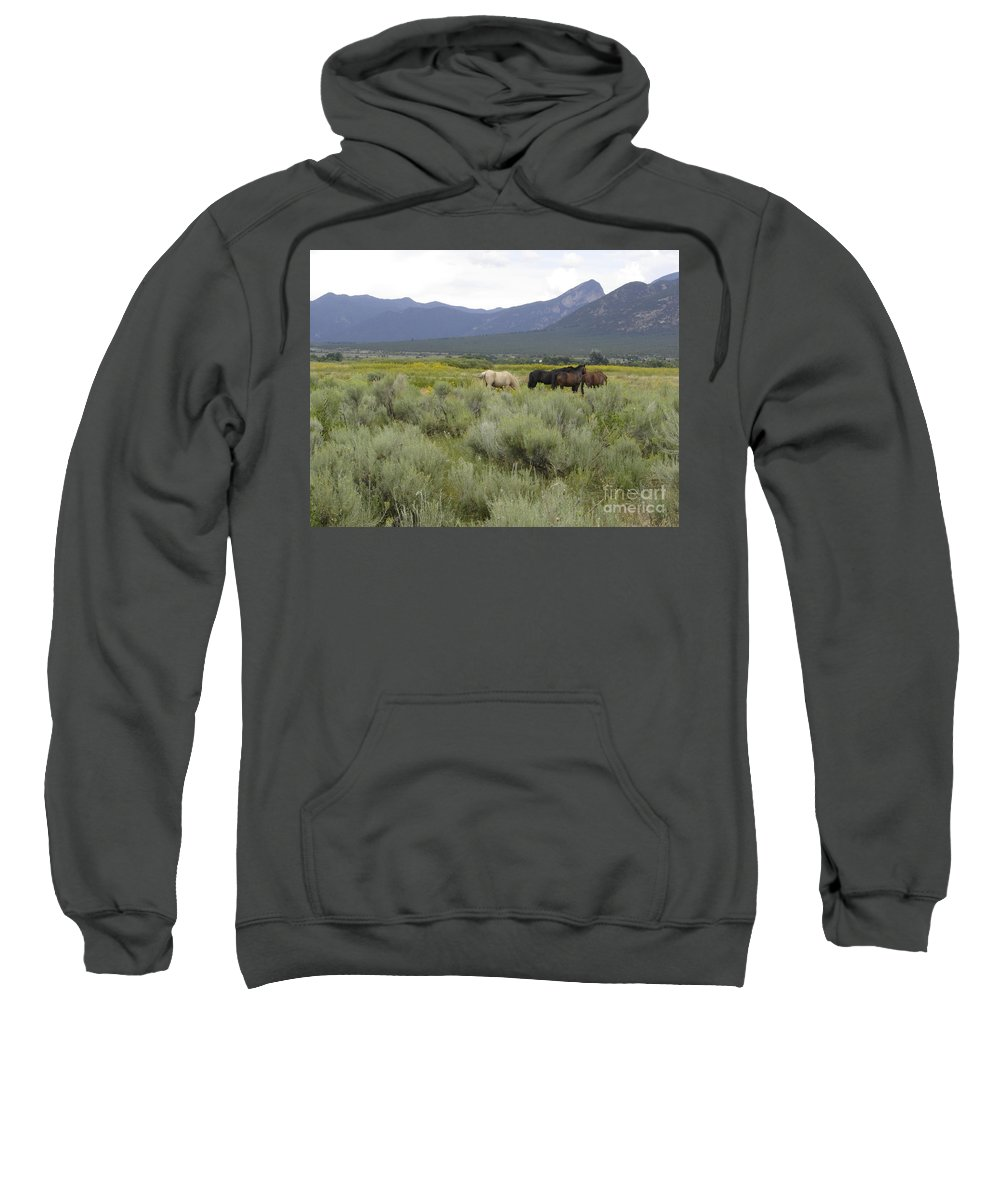 Horses Sweatshirt featuring the photograph Freedom by Mary Rogers