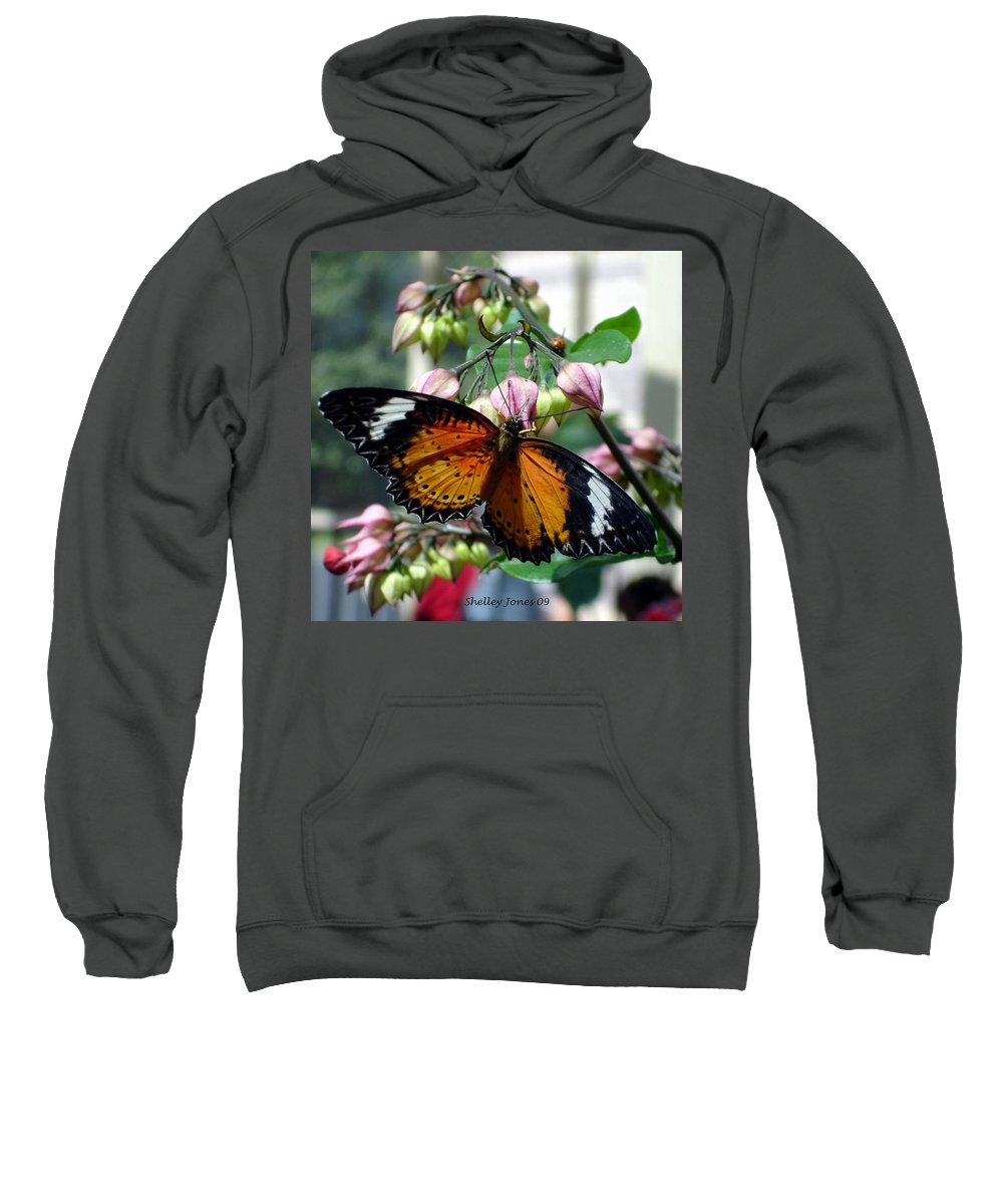 Photography Sweatshirt featuring the photograph Friends Come In Small Packages by Shelley Jones