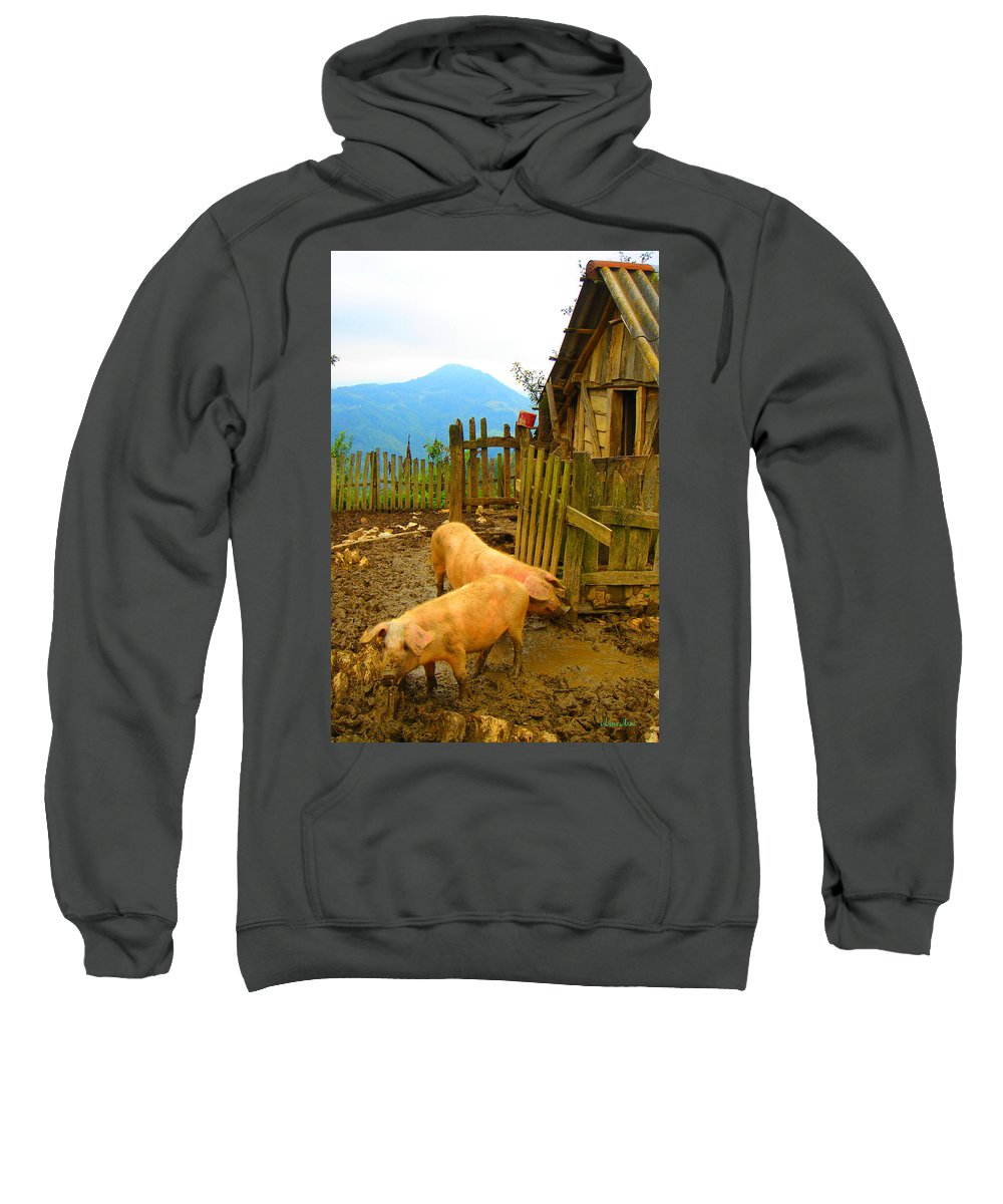 Friends Sweatshirt featuring the photograph Friends by Marko Mitic