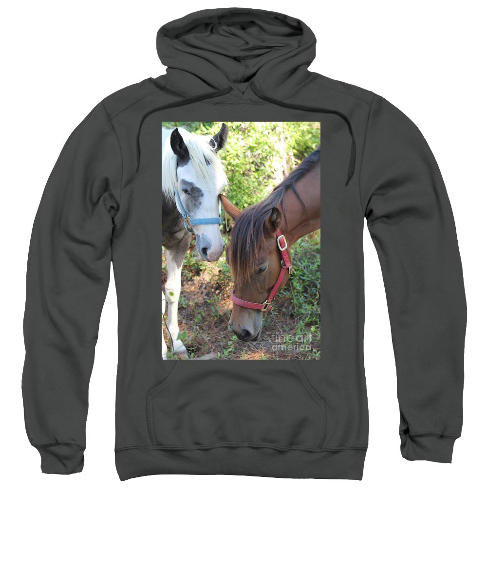Horses Sweatshirt featuring the photograph Friends by Michelle Powell
