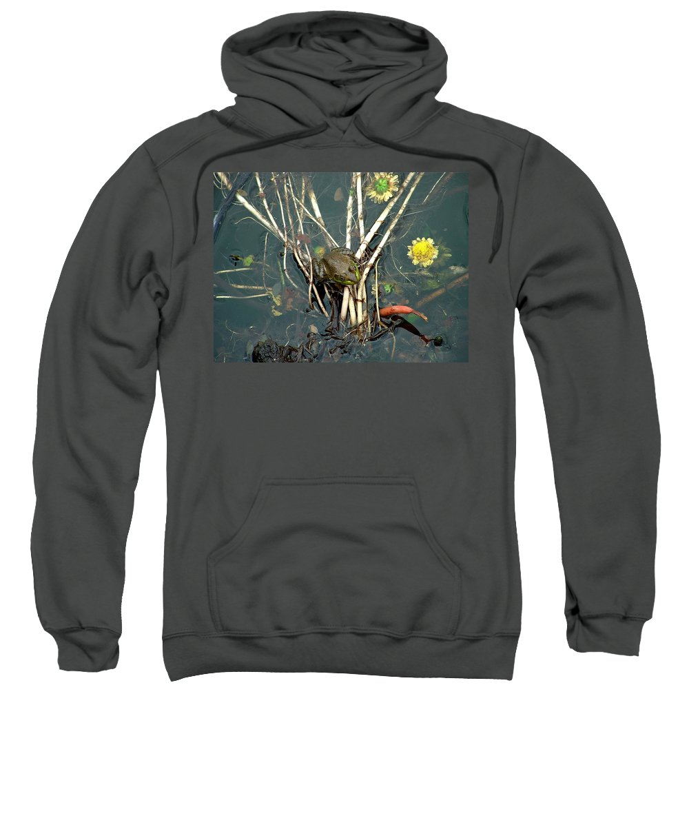 Frog Sweatshirt featuring the photograph Frog On A Stick by Robert Meanor