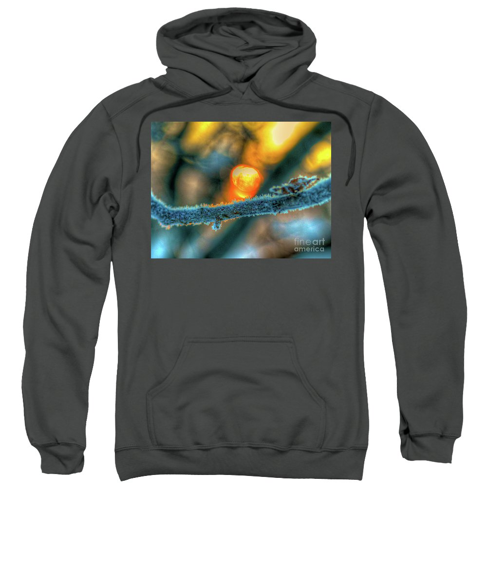 Cold Sweatshirt featuring the photograph Frosty Morning by Robert Pearson