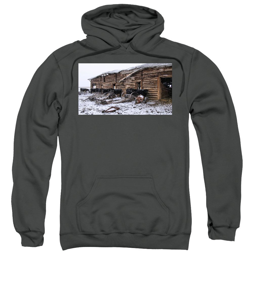 Cattle Sweatshirt featuring the photograph Frozen Beef by Susan Kinney