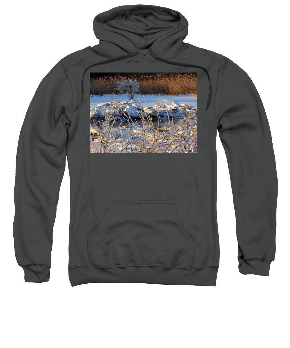 Winter Sweatshirt featuring the photograph Frozen Fantasy by Dianne Cowen