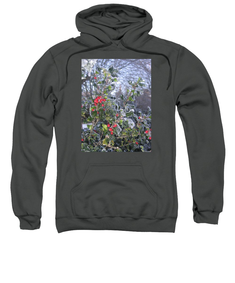 Winter Sweatshirt featuring the photograph Frozen In Time by Paula Emery
