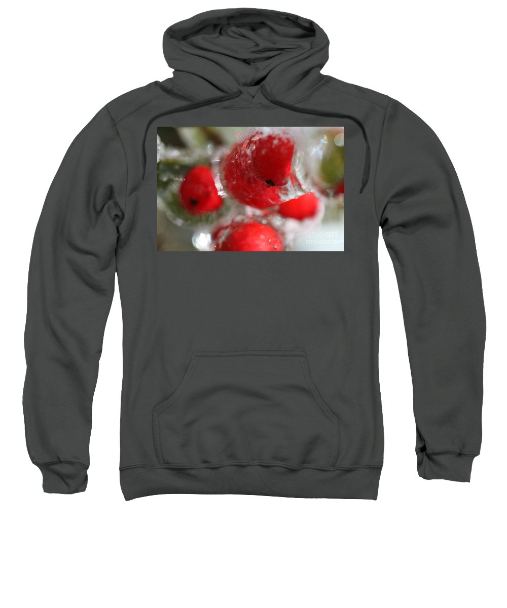 Berries Sweatshirt featuring the photograph Frozen Winter Berries by Nadine Rippelmeyer