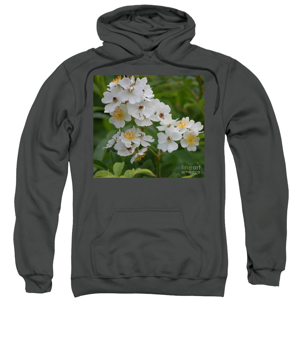 Sweatshirt featuring the photograph Fruity Potential by David Lane