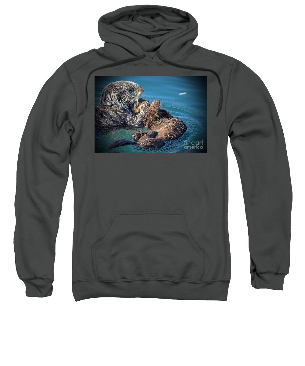 Otters Sweatshirt featuring the photograph Furry Nurturance by Kris Hiemstra