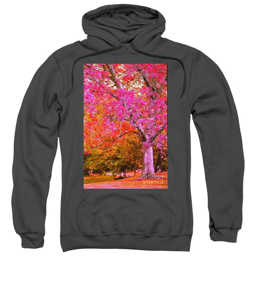 Fuschia Sweatshirt featuring the photograph Fuschia Tree by Nadine Rippelmeyer