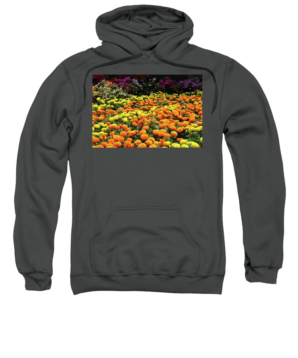 Garden Sweatshirt featuring the digital art Garden by Bert Mailer