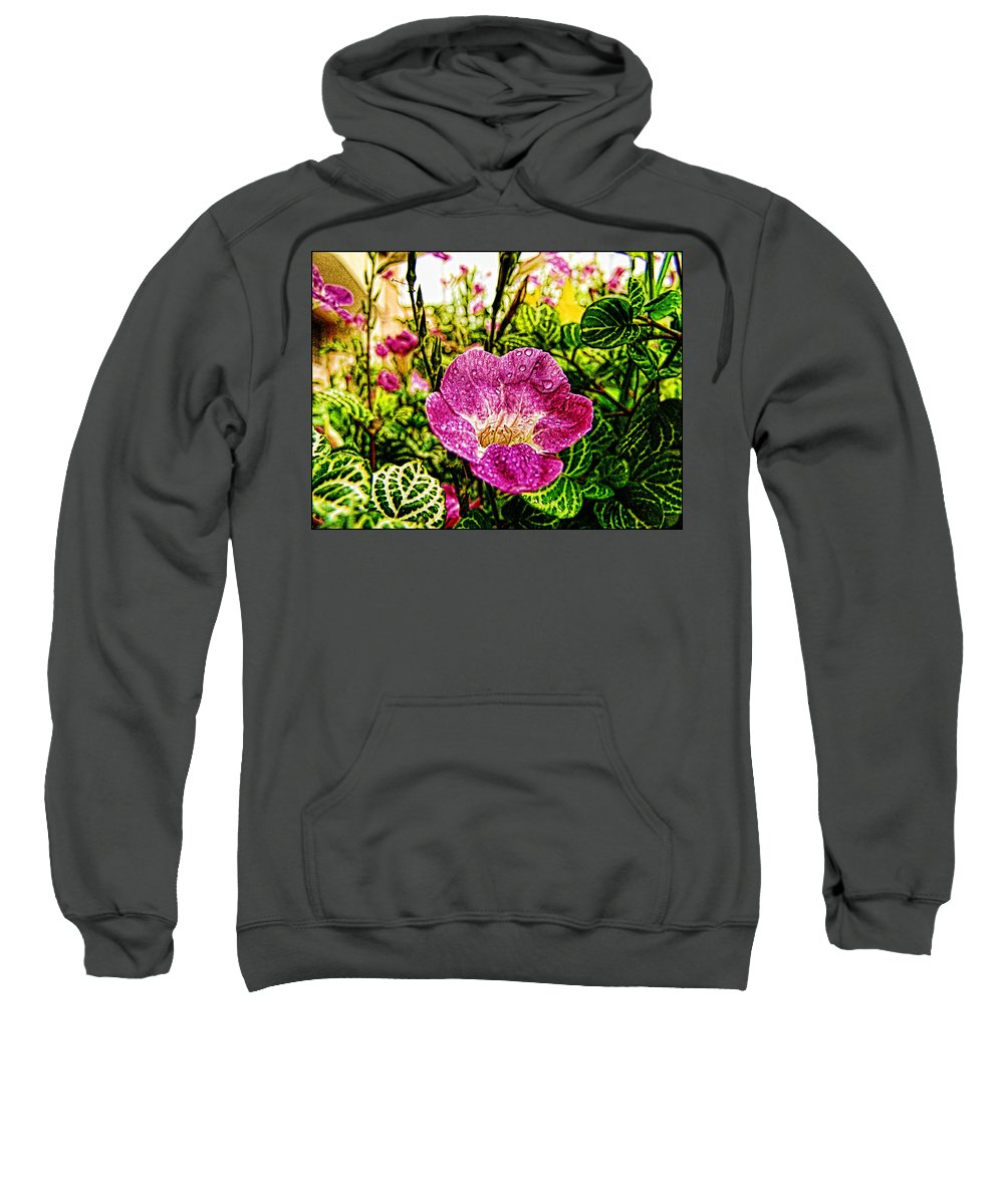 Garden Sweatshirt featuring the photograph Garden Flower by Galeria Trompiz