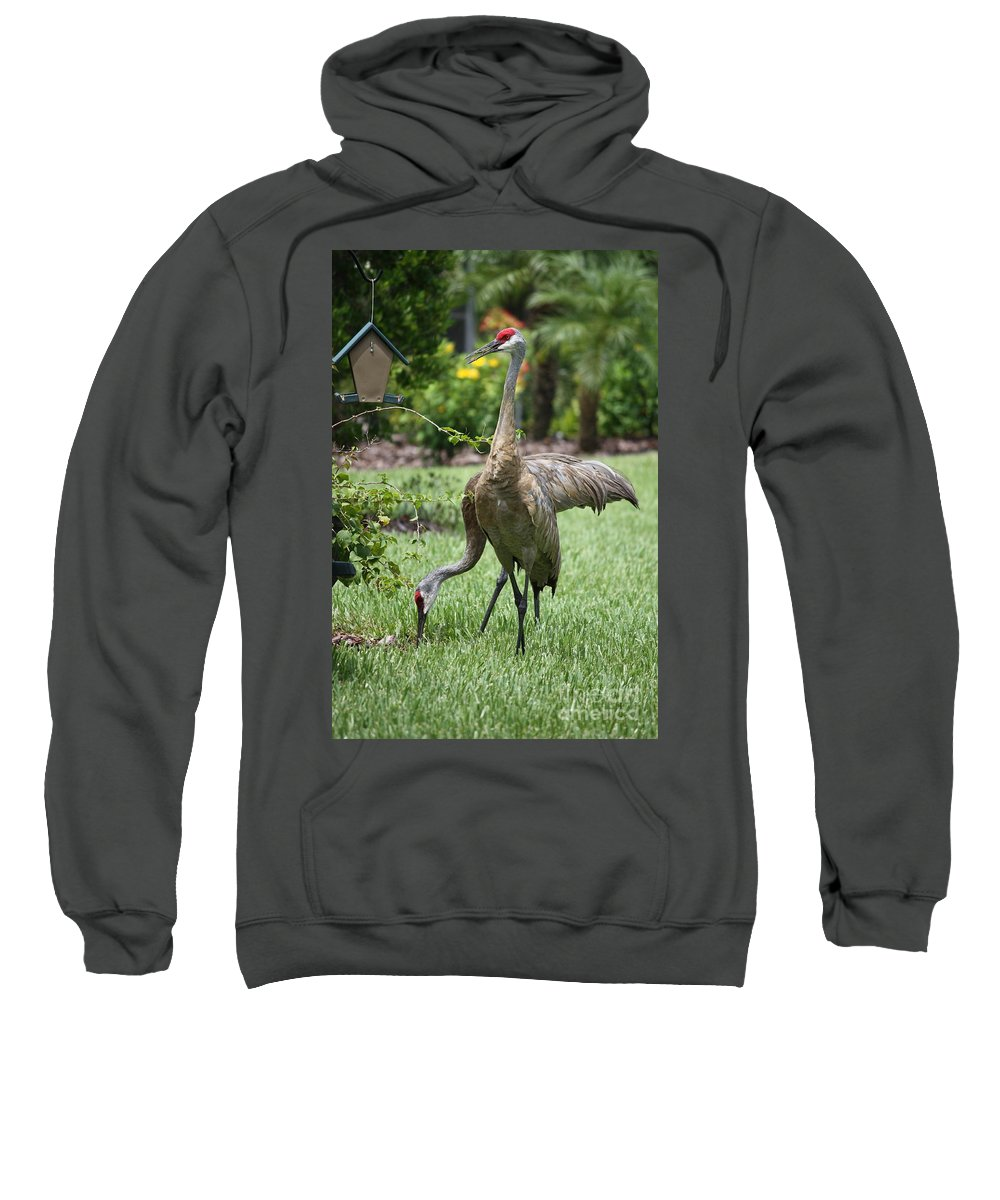 Garden Sweatshirt featuring the photograph Garden Sandhills by Carol Groenen