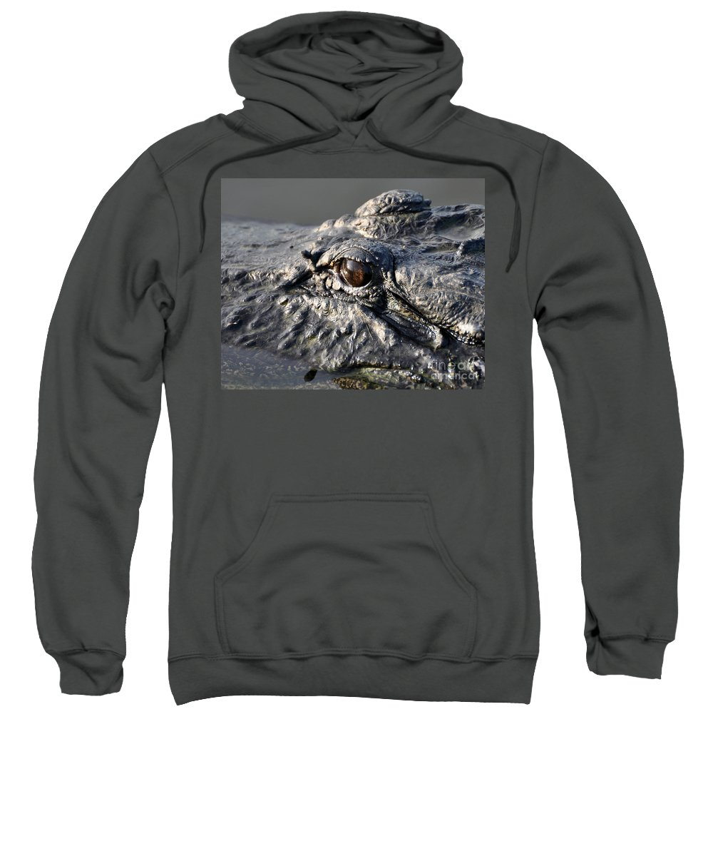 Alligator Sweatshirt featuring the photograph Gator Gaze by Al Powell Photography USA