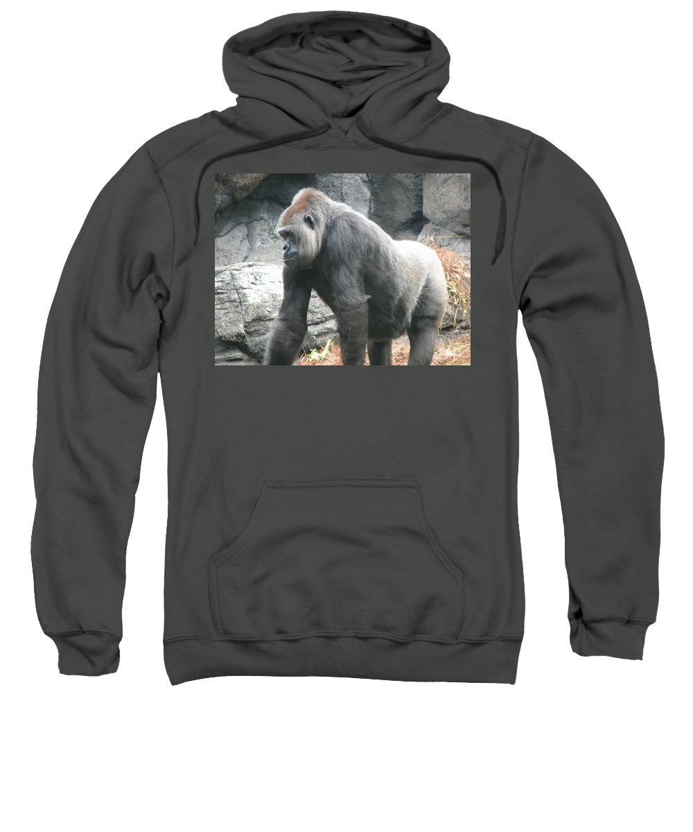 Gorilla Sweatshirt featuring the photograph Gentle Giant by Stacey May