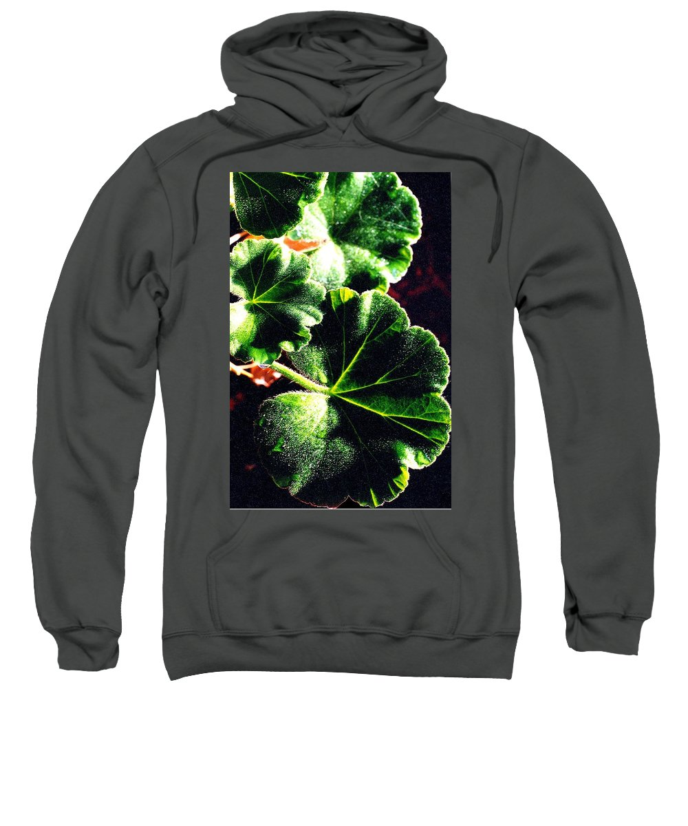 Geraniums Sweatshirt featuring the photograph Geranium Leaves by Nancy Mueller