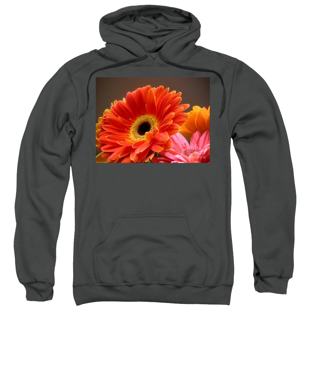Nature Sweatshirt featuring the photograph Gerbera Daisies - Luminous by Lucyna A M Green