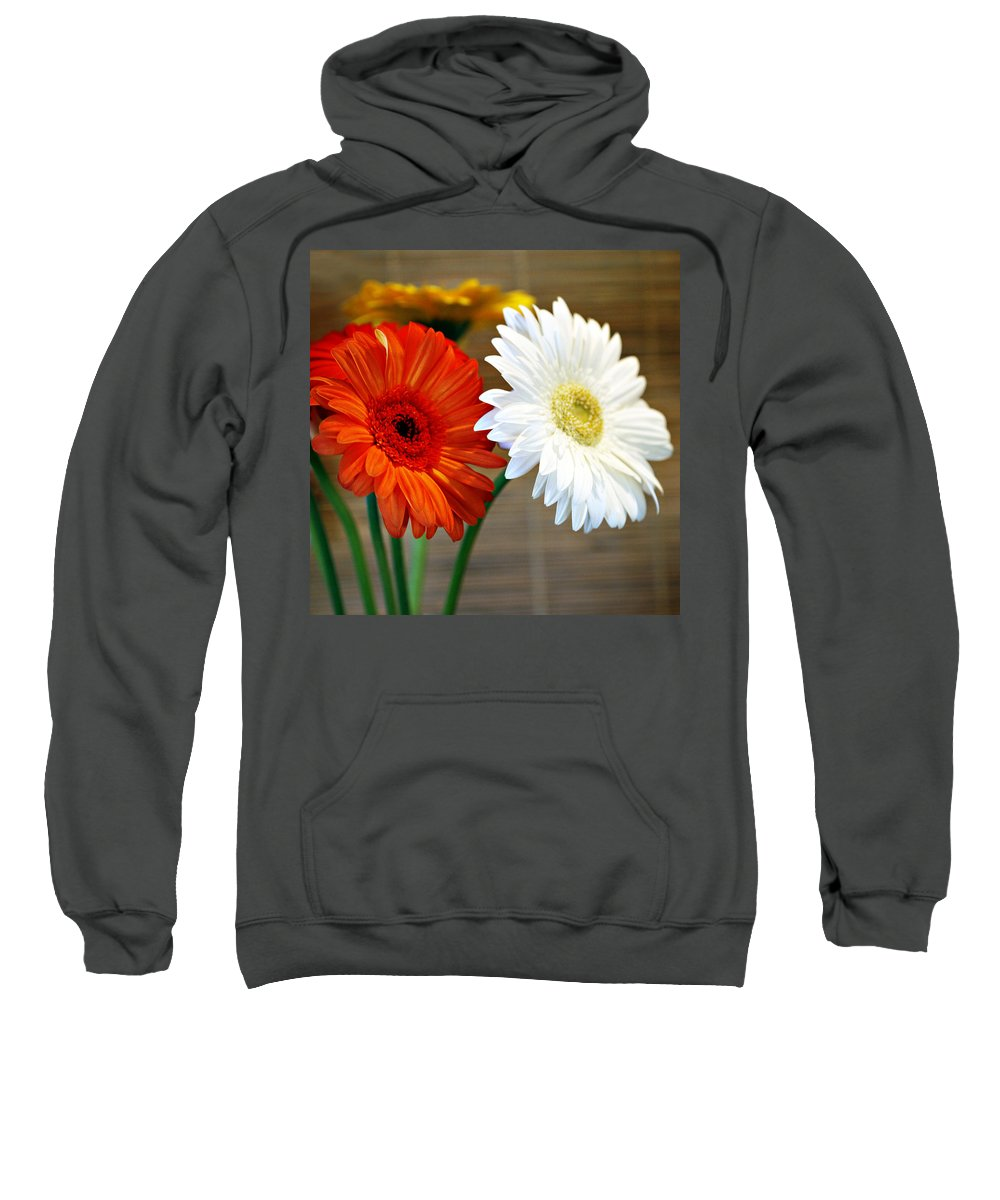 Flower Sweatshirt featuring the photograph Gerbers by Marilyn Hunt