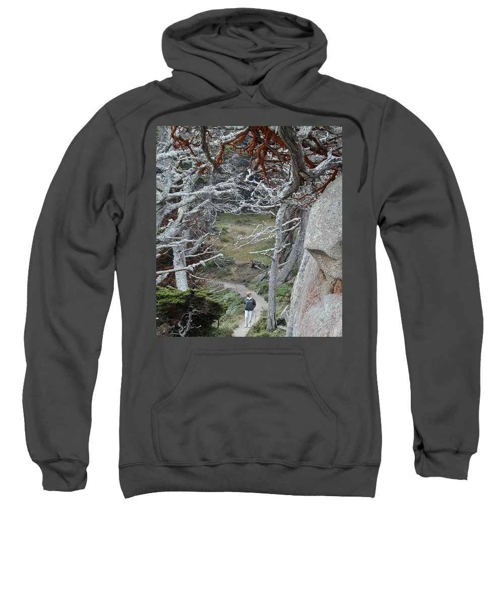 Lichens Sweatshirt featuring the photograph Ghost Trees by Douglas Barnett