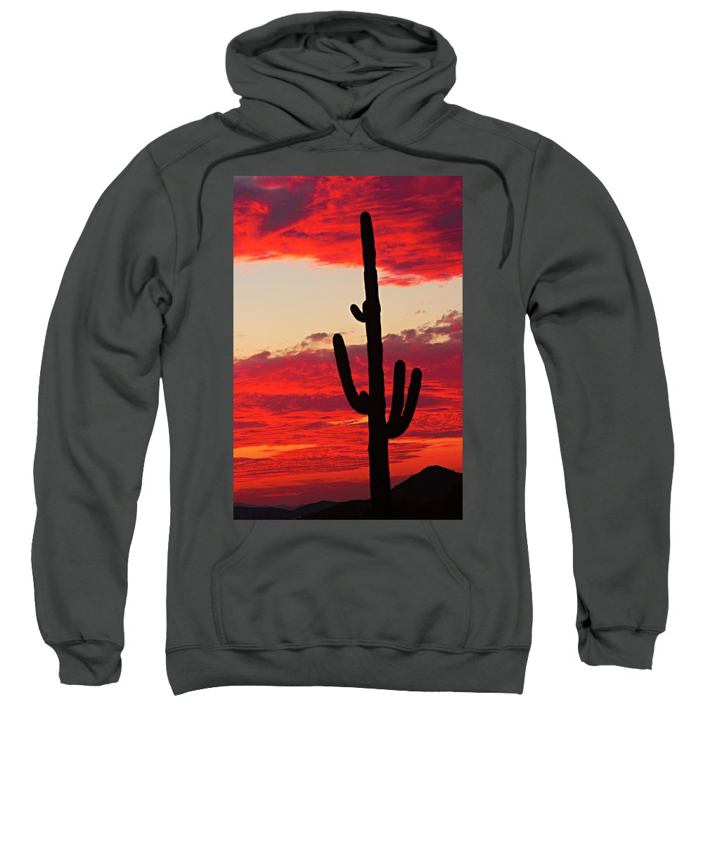 Sunset Sweatshirt featuring the photograph Giant Saguaro Southwest Desert Sunset by James BO Insogna