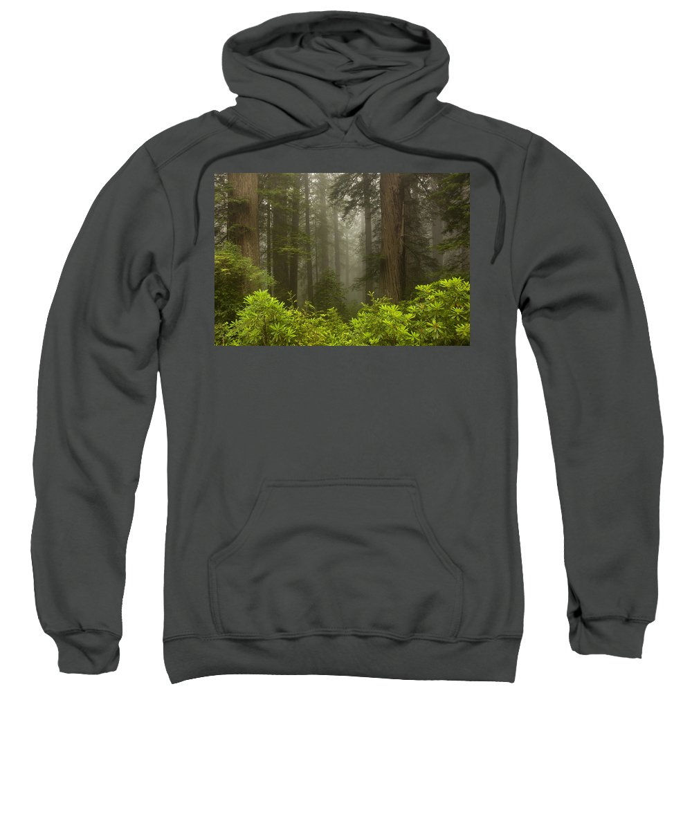 Redwood Sweatshirt featuring the photograph Giants In The Mist by Mike Dawson