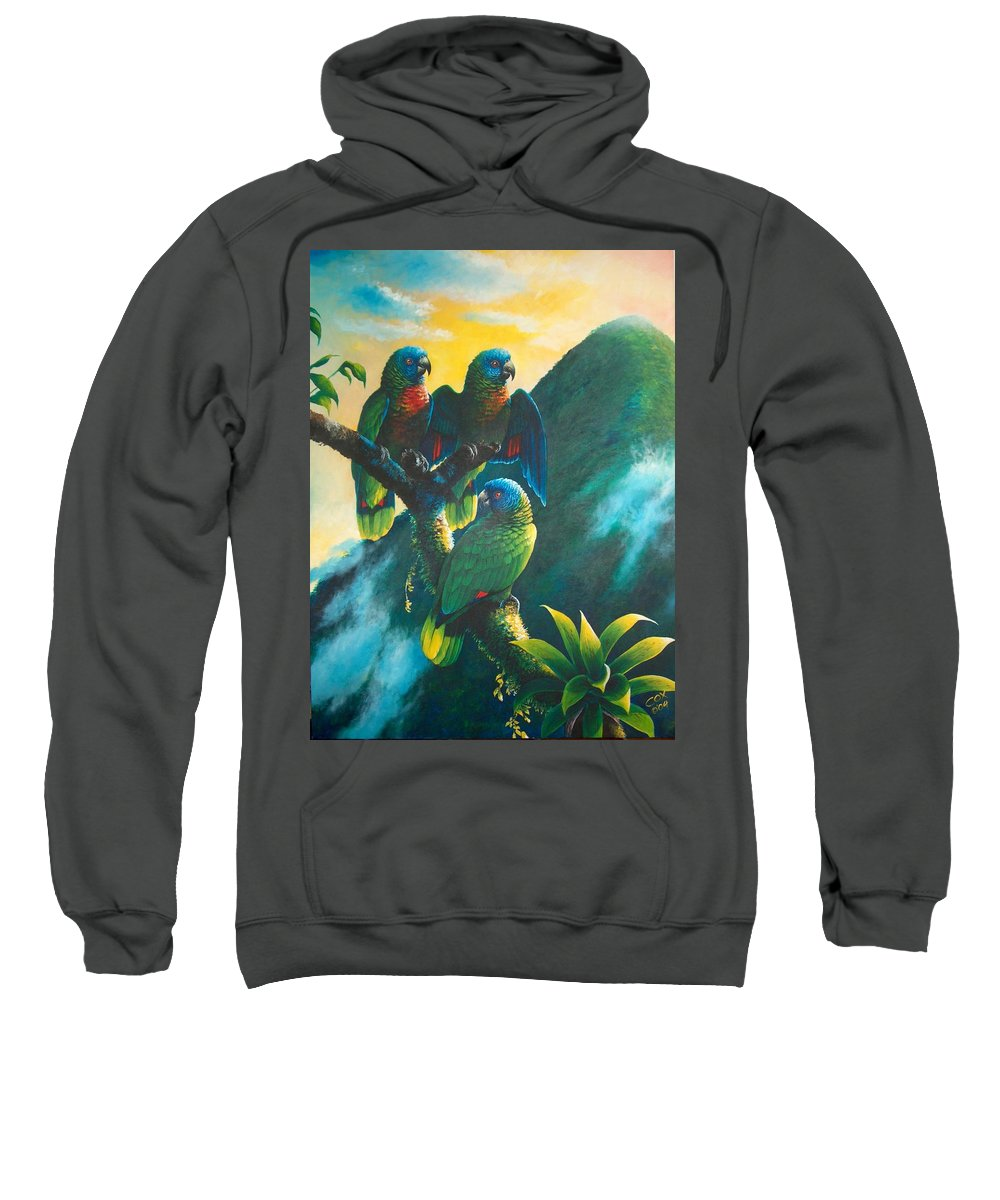 Chris Cox Sweatshirt featuring the painting Gimie Dawn 1 - St. Lucia Parrots by Christopher Cox