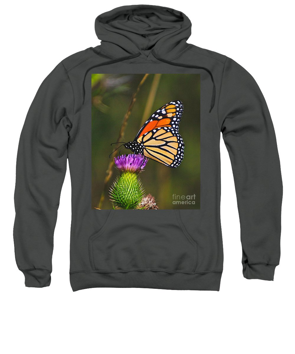 Related Tags: Sweatshirt featuring the photograph Gods Creation-16 by Robert Pearson